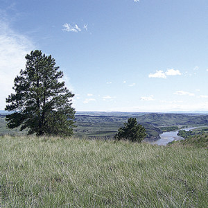 YellowstoneRiver-HOME